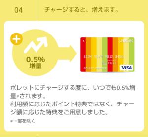 Pollet Visa Prepaidとは